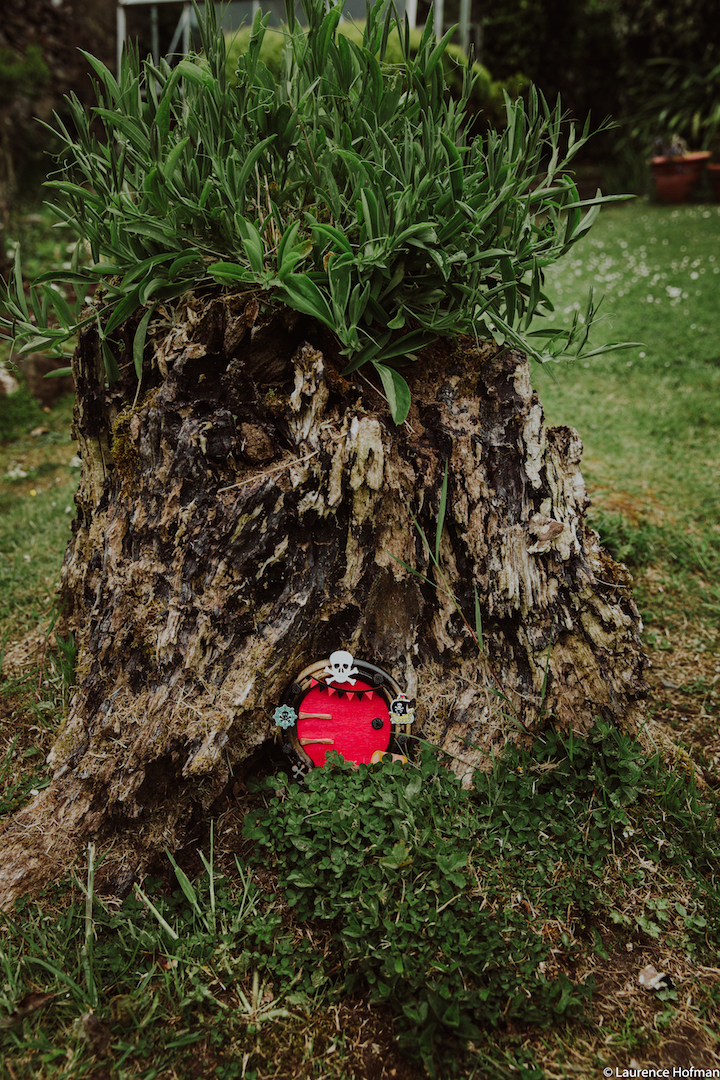Fairy Doors – Connemara Therapeutic Riding